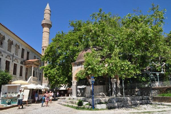 Platane des Hippocrates und Hadjii-Hassan-Moschee in Kos-Stadt